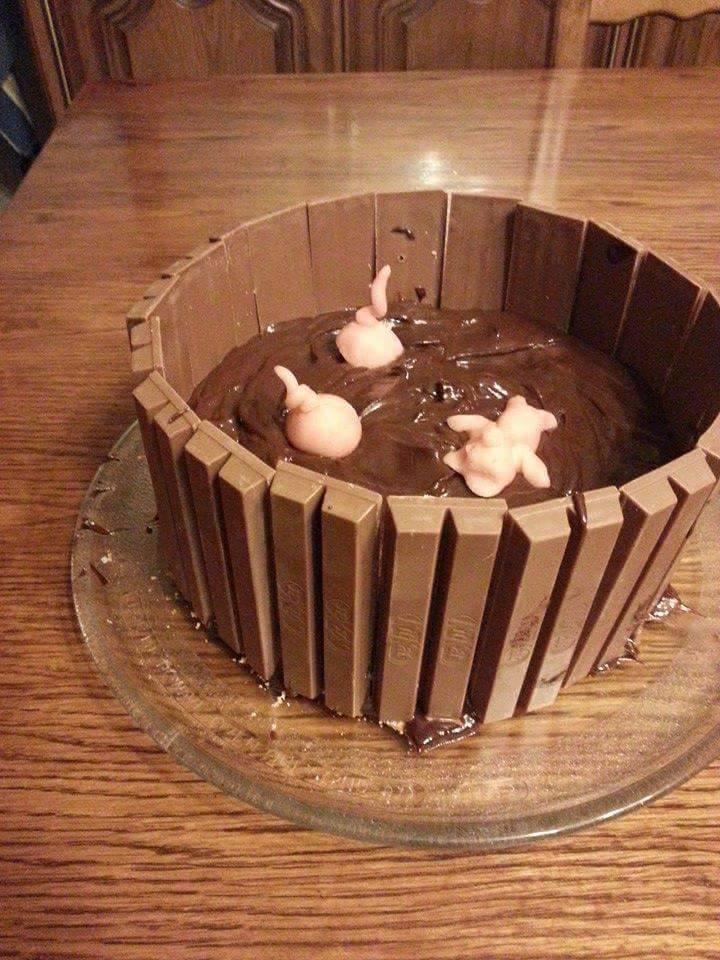 Gâteau bain de boue pour les cochons